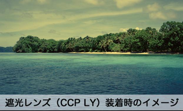 遮光レンズ(CCP LY)装着時のイメージ